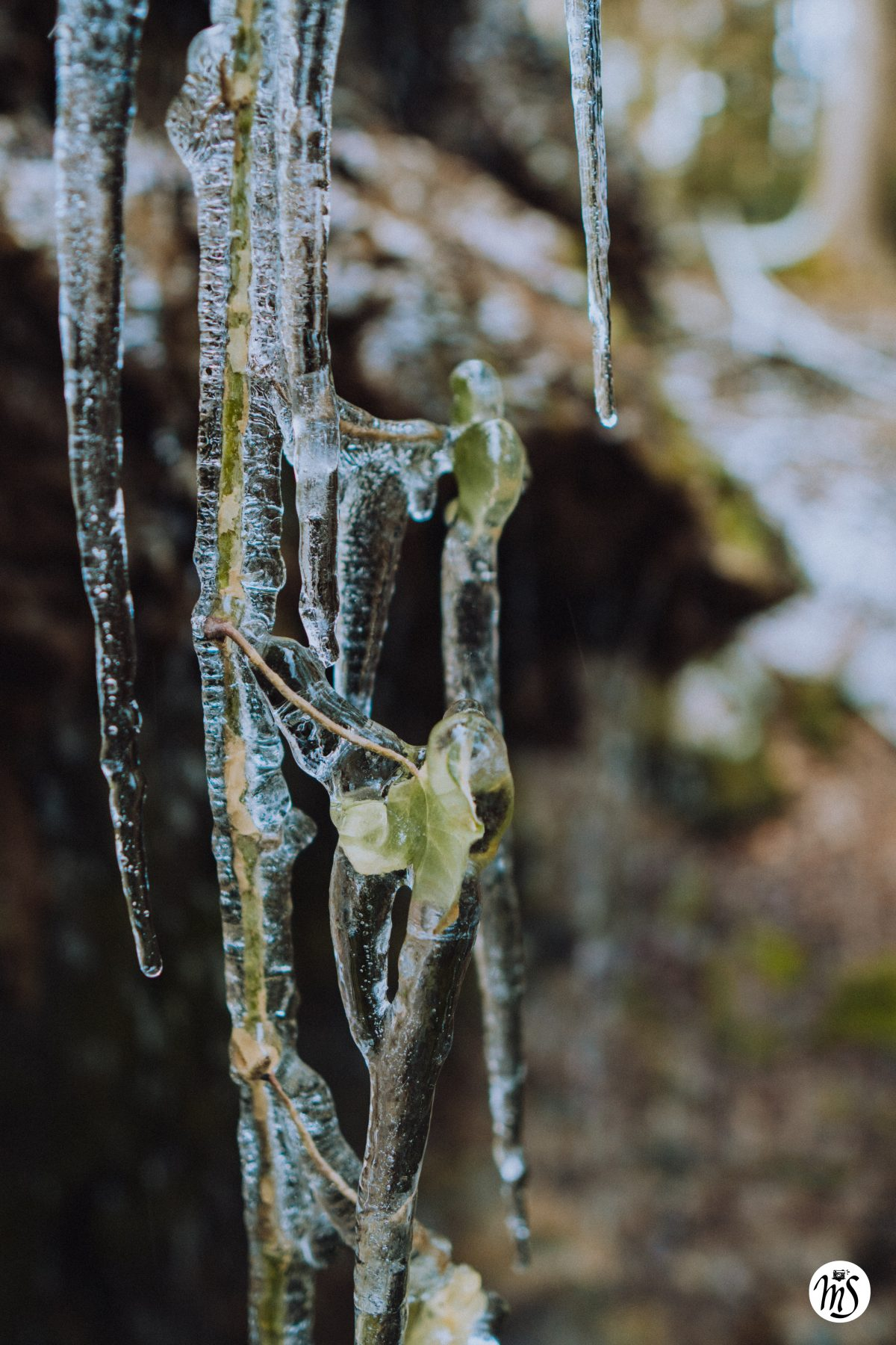 Wasserfall und Eiszapfen